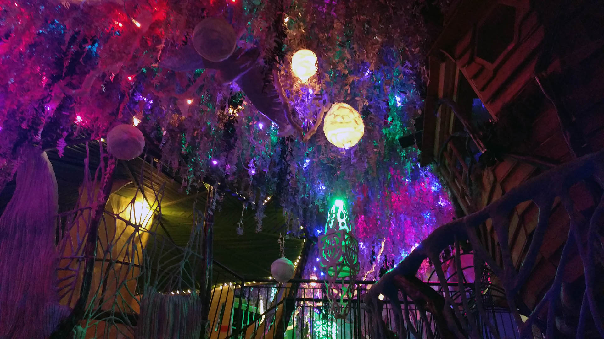 A Second Visit to Meow Wolf