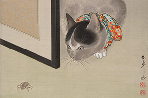 Cat Watching a Spider