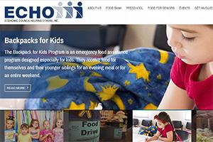 ECHO Inc Website